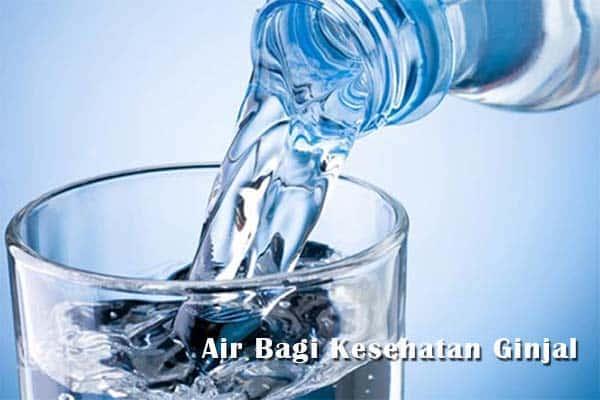 air untuk kesehatan ginjal