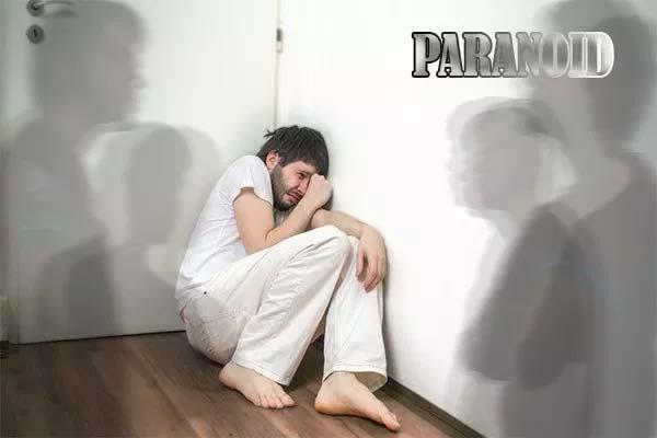 Pengertian Paranoid (Paranoia)