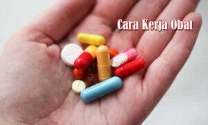 Cara Kerja Obat